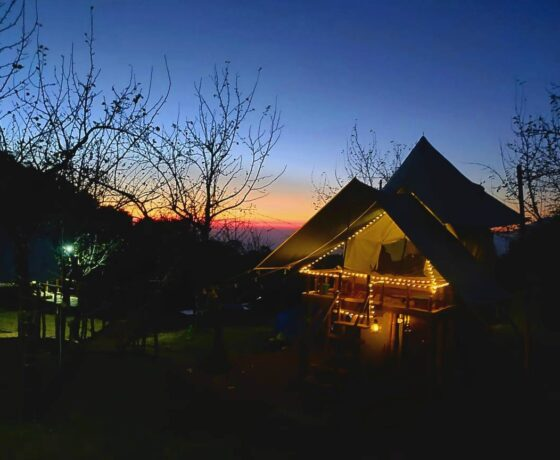New Year Package, Glamping and Camping in Bir