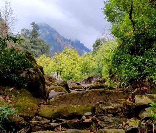 Trekking to hot water spring in Bir