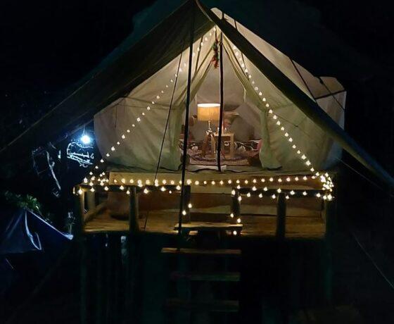 Machaan Tent at Camp Oak View Himachal