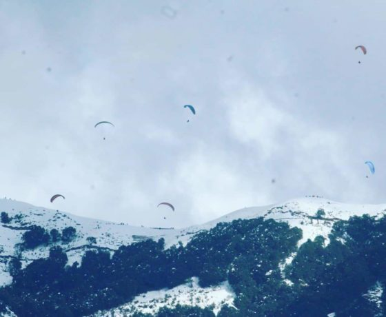 Gliders Paragliding and snow bir Billing