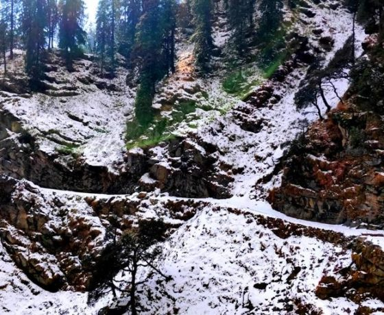 Packages of trekking camping and paradking in bir valley