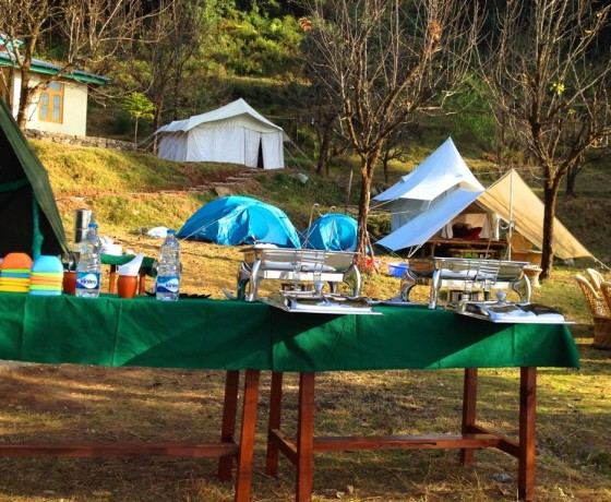 Camping and Paragliding Camp Oak View, Bir