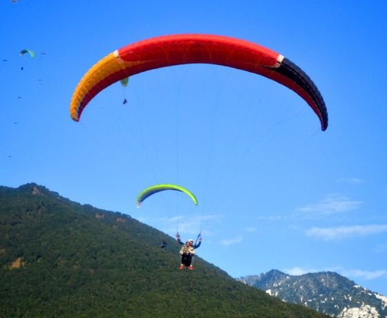 Packages and price for paragliding in Bir Billing near Dharamshala